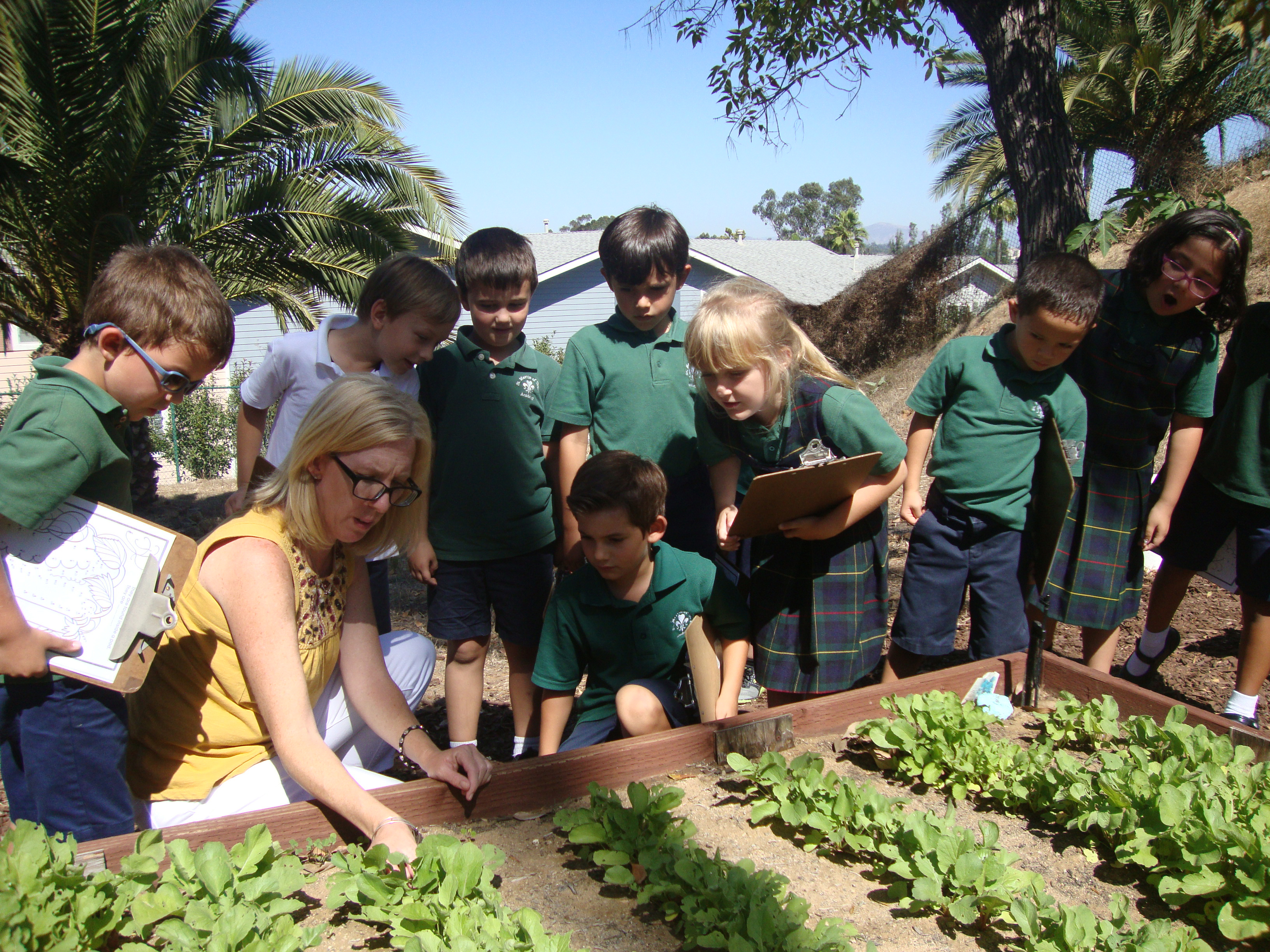 Students learn about growing food in the Community Garden.