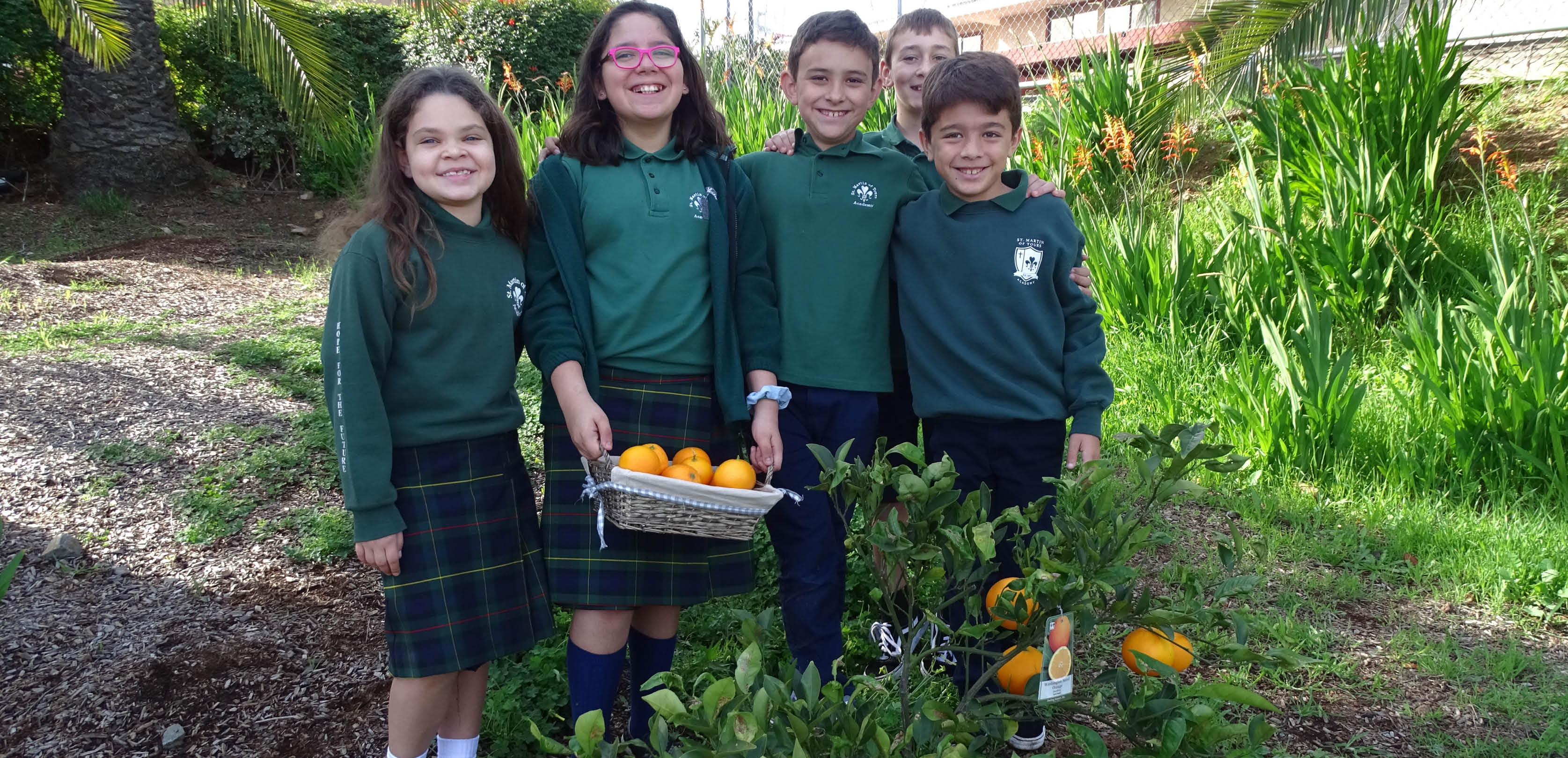 Students harvest oranges from the school garden.